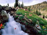 Bewitching Cascades - Free screensaver