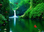 Green Waterfalls - Free screensaver